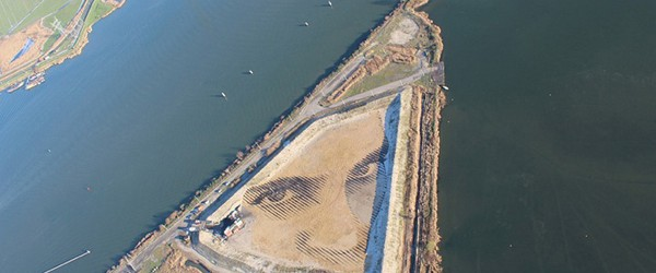 Giant portrait for above